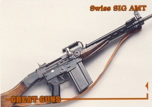 Great Guns SIG AMT front