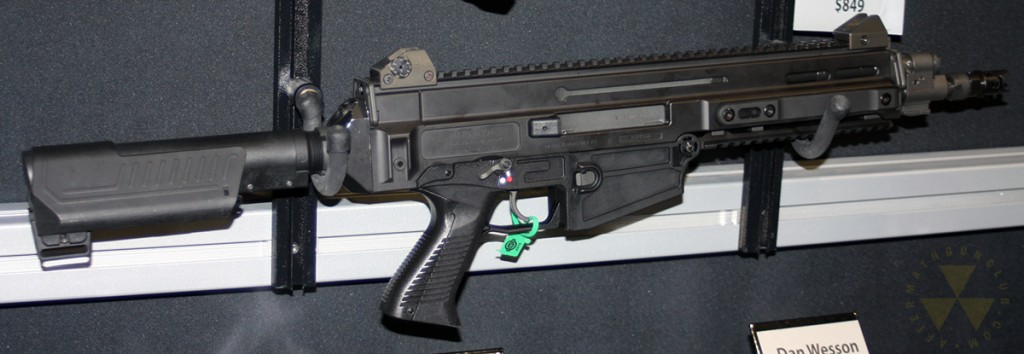 CZ-805pistolbrace